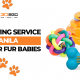 3D Printing Service Manila For Your Fur Babies